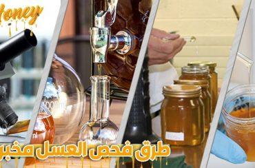طرق اختبار العسل | فحص العسل مخبريا |  تحليل العسل في المختبر