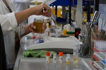 مختبر العسل | مختبر فحص و تحليل العسل ومعرفة جودة جميع انواع عسل النحل
