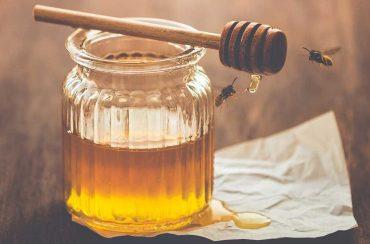 انزيمات العسل | نشاط الأنزيمات في العسل